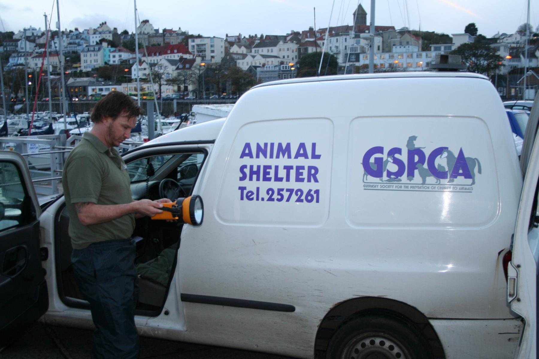 GSPCA seal rescue from Jethou in Guernsey
