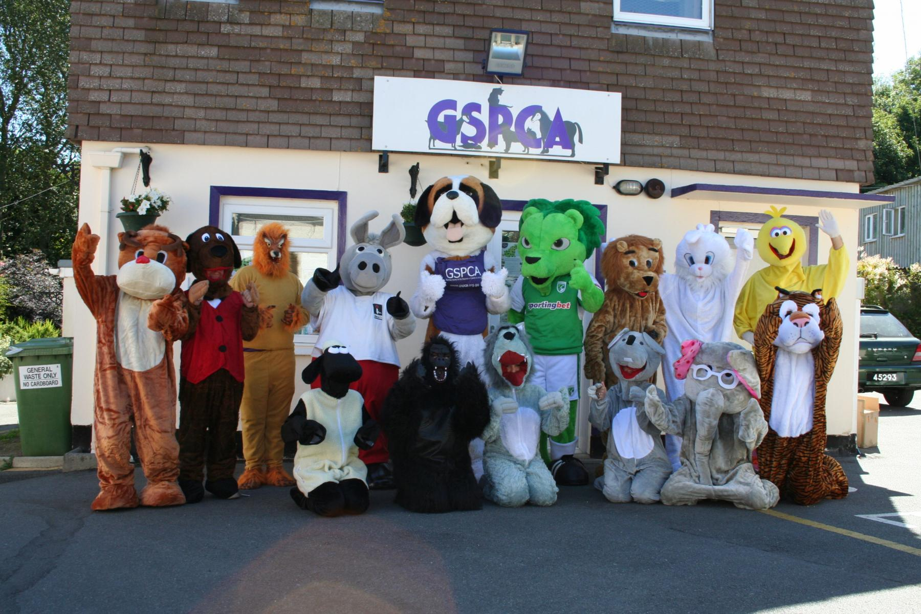 Mascot Racing in Guernsey with Roary the GFC Lion, Daniel the Donkey from Island FM, Bernard the GSPCA Mascot and animal friends