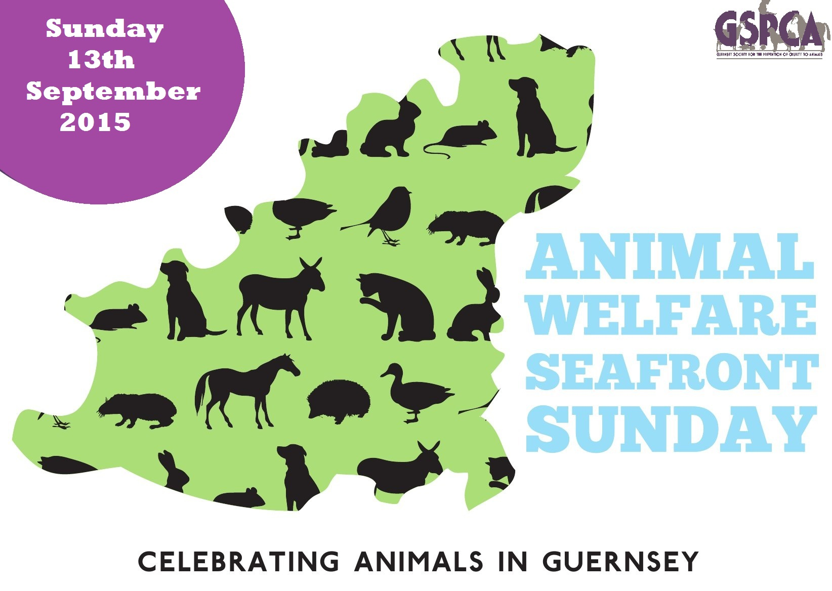 Animal Welfare Seafront Sunday 2015 GSPCA Guernsey