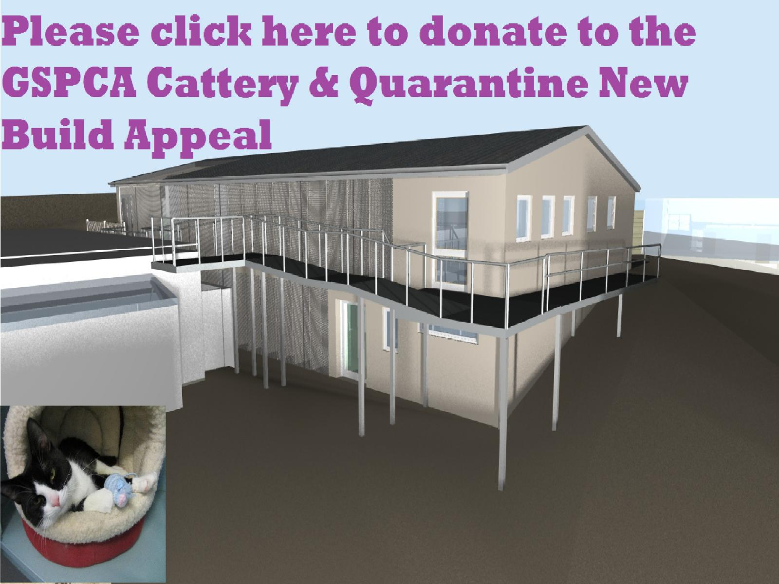 To help donate to our Cattery & Quarantine Appeal please click here